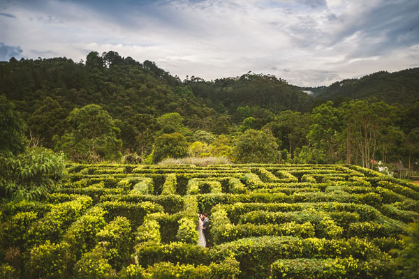 gorgeous garden maze labyrinth, photo by Sam Hurd Photography | via junebugweddings.com
