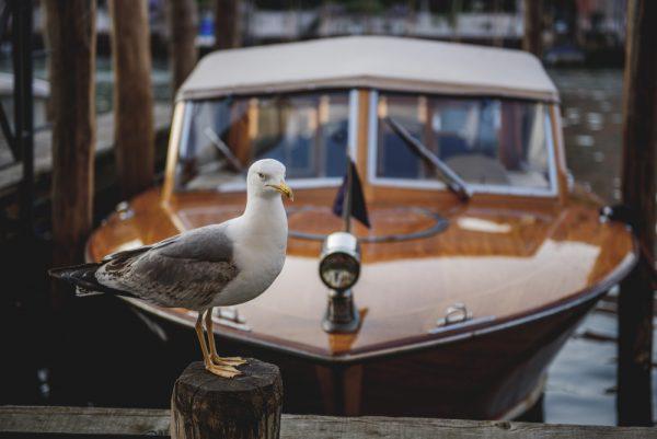 Venice_LMFOTO_0001