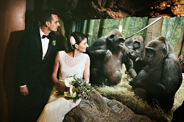 einphoto-Bronx-Zoo-Wedding-042