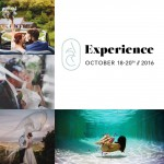 Win a ticket to attend The Experience // ARC