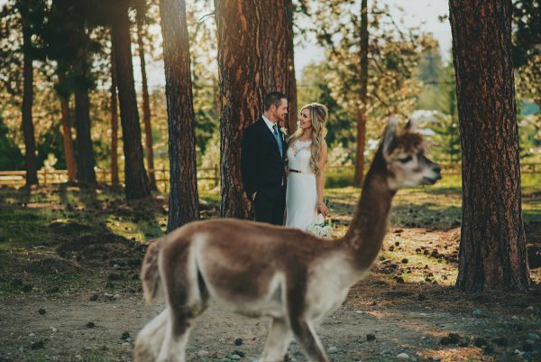 Lama Wedding - Joelsview Photography