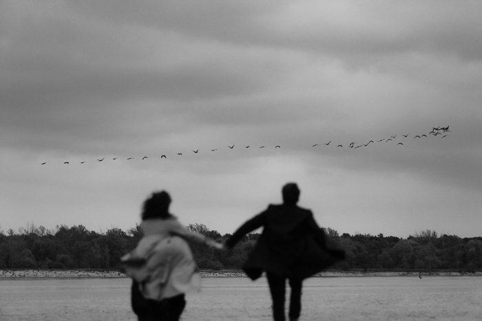 black and white running with birds top pics