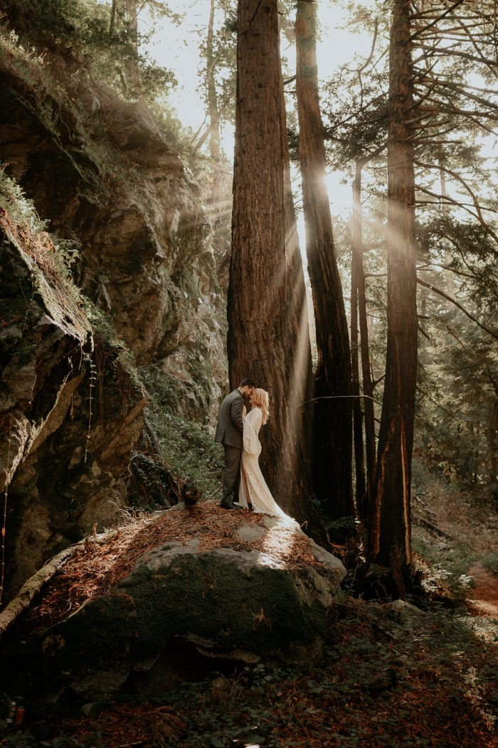 top pics of the month wedding couple in forest
