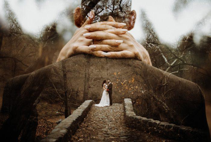 top pics double exposure in the woods